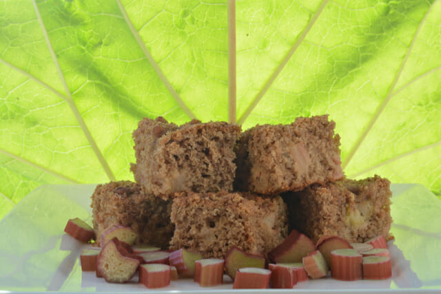 Pieces of Rhubarb Coffee Cake stacked in front of a giant rhubarb leaf.