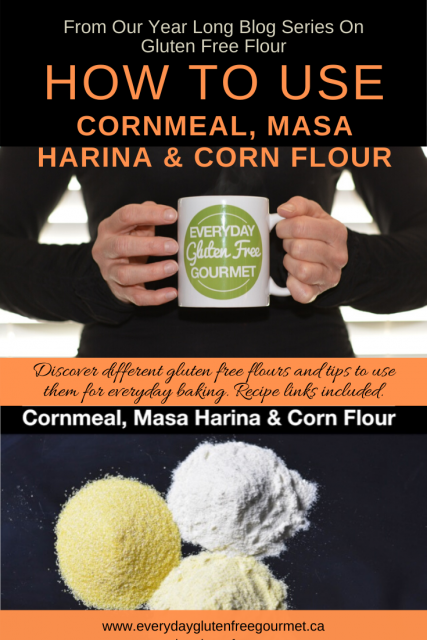 Photo of the Everyday Gluten Free Gourmet in black, holding coffee mug with logo, underneath is picture of cornmeal, masa harina and corn flour on a black background.